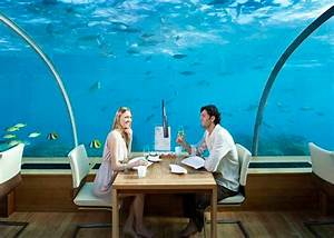 Dinner for two – under the sea! The underwater restaurant ...