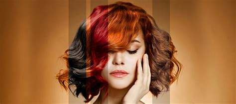 salon hair color l or salon hair color and higlights rockville md