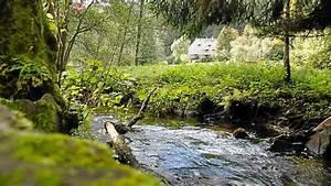 Freibad Bad Teinach : bad teinach zavelstein vom dachshof zur teinach m ndung bad teinach zavelstein ~ Frokenaadalensverden.com Haus und Dekorationen