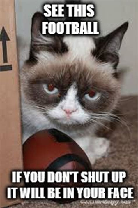 Football Cat Meme - image tagged in grumpy cat football imgflip