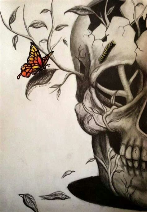 Half Skull With Catterpillar Brow Butterfly Skulls