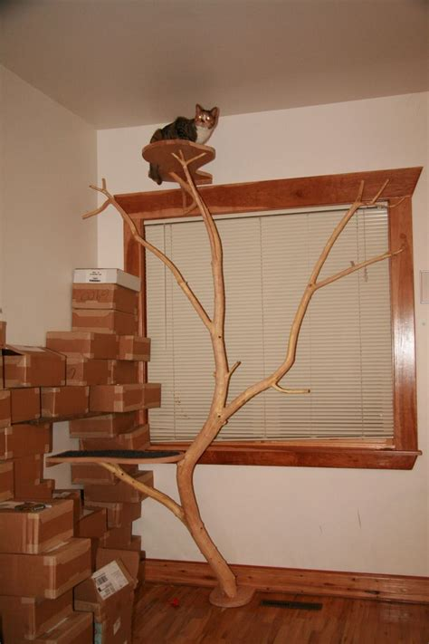 25 Best Images About Homemade Cat Tree On Pinterest