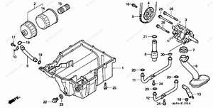 Honda Motorcycle 1999 Oem Parts Diagram For Oil Pump