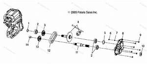 Polaris Atv 2006 Oem Parts Diagram For Gearcase  Output
