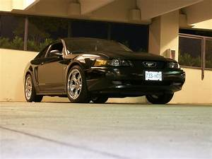 20 Inch Wheels    99-04 Mustangs