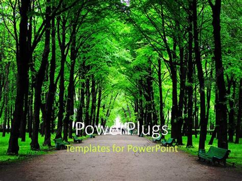 template forest powerpoint template forest with green trees and benches 15024