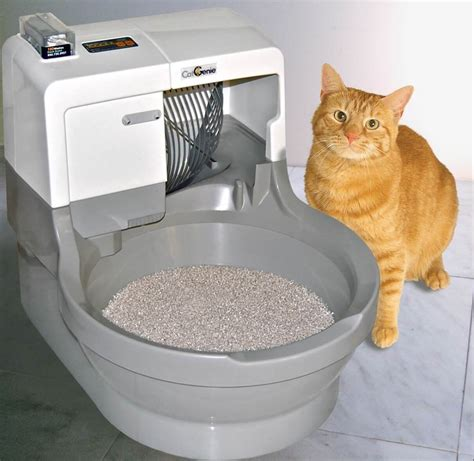 catgenie  washing flushing cat litter box automatic