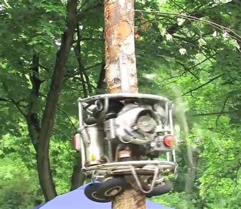 An Impressive Tree Climbing, Limb Shaving Chainsaw