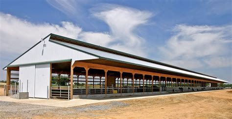 Free Stall Dairy Barn 40 Cow