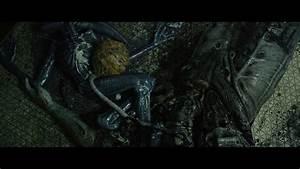 Cinetropolis » Guilty Pleasures: Prometheus