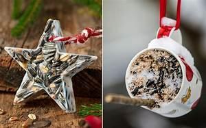 Handcreme Selber Machen Rezept : bild 3 vogelfutter selber machen feines f r k rnerfresser ~ Yasmunasinghe.com Haus und Dekorationen