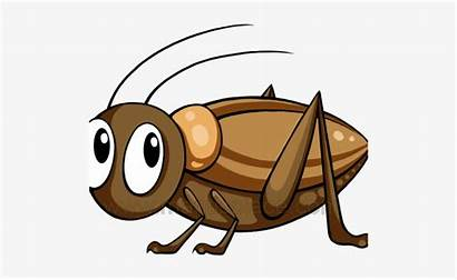 Cricket Clipart Insect Bug Brown Crickets Cartoon