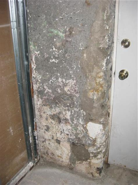 Help! Diy Mold Removal In Basement  Doityourselfcom. Furniture Placement For Long Living Room. The Living Room Restaurant. Which Colour Is Good For Living Room. Interior Paint Colors For Living Room. Living Room Large Rugs. England Living Room Furniture. Dead In The Living Room. The Elephant In The Living Room Watch Online