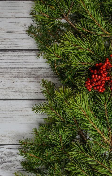 fotos gratis fondo navidad decoracion fiesta