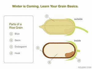 Grains Are Nerdy  Nerdy And Awesome