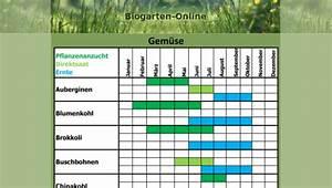 Aussaatkalender 2017 Pdf : gem segarten kalender ~ Whattoseeinmadrid.com Haus und Dekorationen