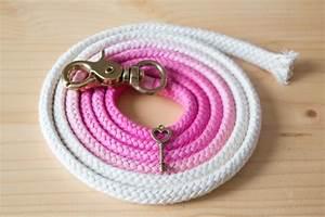 Hunde Sachen Kaufen : diy hundeleine aus baumwollseil diy hundeleine hunde und hunde bekleidung ~ Watch28wear.com Haus und Dekorationen
