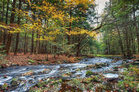 fileshallow stream  rock hill nyjpg wikimedia commons
