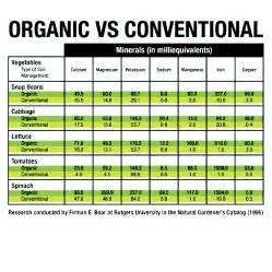 Organic Food List