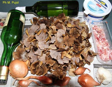 cuisiner des chanterelles chignons toute l ée des chanterelles à cuisiner