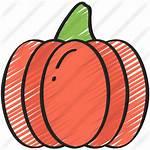 Pumpkin Icon Premium Sketchy Icons