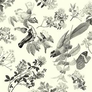 Vintage bird wallpaper - ... | Interior ideas | Pinterest ...