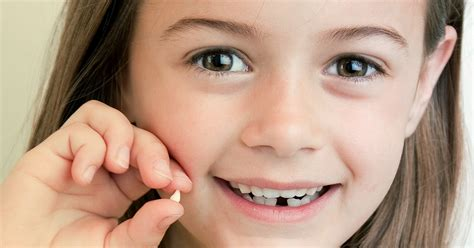 Stem Cells From Milk Teeth - DentalsReview