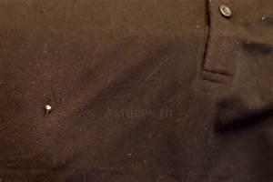 Comment Reconnaitre Mite Alimentaire Ou Textile : lutter contre les mites des v tements guide astuces ~ Melissatoandfro.com Idées de Décoration