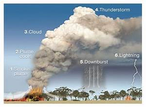 When Bushfires Make Their Own Weather