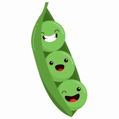 Booty Peas Legumes Maximise Foods Nutrition