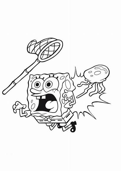 Jellyfish Spongebob Coloring Pages Jelly Fish Colored