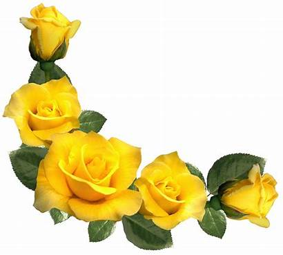 Yellow Rose Roses Clip Clipart Flowers Decor