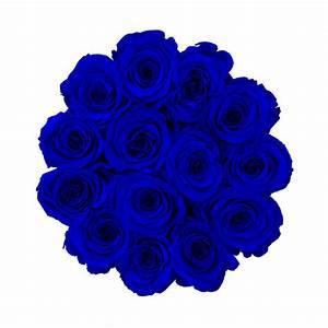 Ewige Rosen Box : blaue ewige rosen in beige beflockter blumenbox ewige rosen rosen produkte online ~ Eleganceandgraceweddings.com Haus und Dekorationen