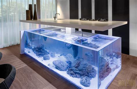 sensational ocean kitchen  aquarium  robert kolenik