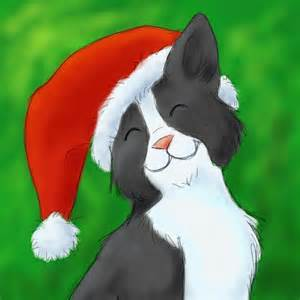 deviantART Cat with Christmas Hat