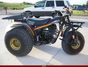 Kawasaki Klt 250  Best Photos And Information Of Modification