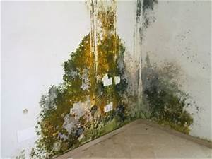 Feuchtigkeit In Der Wand : wand feuchtigkeit werte home image ideen ~ Sanjose-hotels-ca.com Haus und Dekorationen