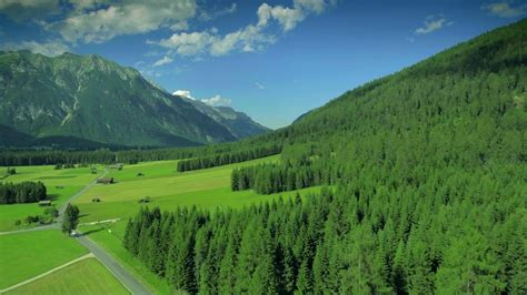 beautiful landscape nature lush forest austria alps