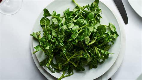 watercress salad  mustard vinaigrette recipe bon appetit
