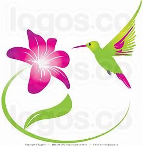 Hummingbird With Flower Clip Art (30+)