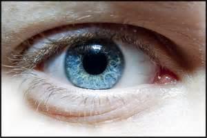 Close Up Blue Human Eye