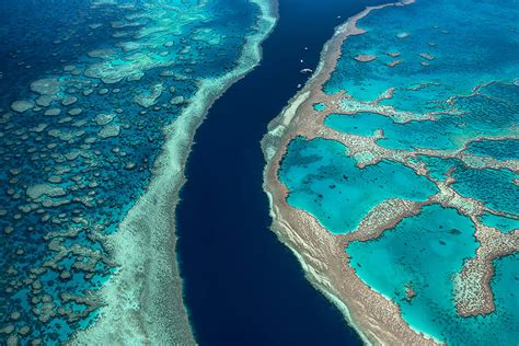 Scenic Flight Over Great Barrier Reef & Whitsundays, 1 Hour - Airlie Beach - Adrenaline