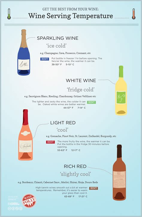 wine serving temperature guide