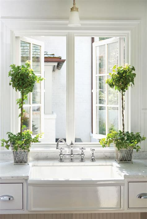 Small Window Plants by 7 Best Houseplants For The Kitchen House Journal