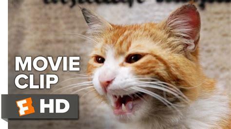 Kedi Movie Clip  Cat Fight (2017)  Documentary Youtube