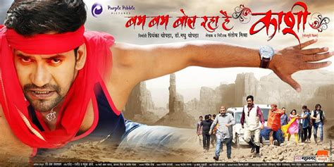 top  bhojpuri movies   box office zee wiki