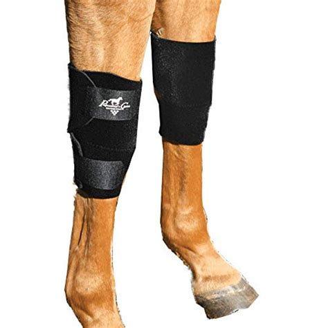 knee boot equine boots choice pair horse professionals universal professional horses choose knees
