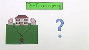Strahlensätze Berechnen : strahlens tze entfernungen im gel nde mathematik online lernen ~ Themetempest.com Abrechnung