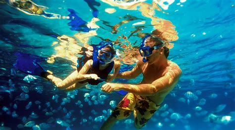 xel ha park  inclusive caribe viaggi travel agency