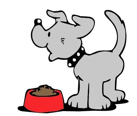 dealing  food aggression verona street animal society